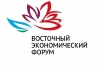 RasonConTrans JVC representatives took part in the 3rd Eastern Economic Forum (EEF)